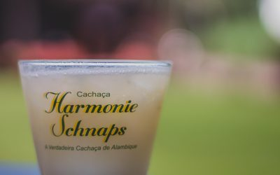Receitas de coquetel com licor: como combinar sua Harmonie Schnaps favorita no verão?