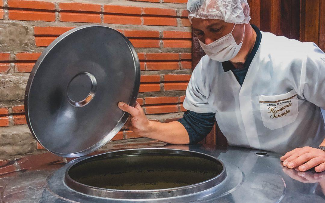Entenda mais sobre as leveduras que utilizamos na fermentação das cachaças artesanais